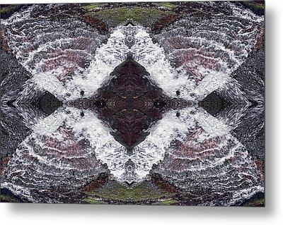 Butterfly Effect Metal Print by Dawn J Benko