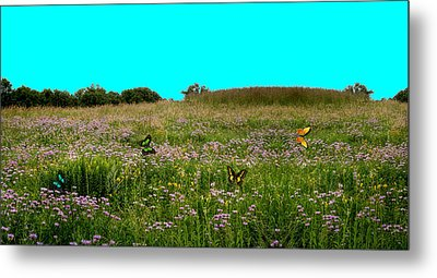 Butterfly Meadow Metal Print by Larry Trupp