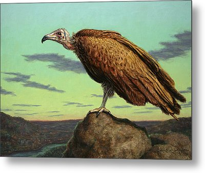 Buzzard Rock Metal Print by James W Johnson