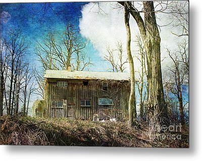 Cabin Fever Metal Print by A New Focus Photography