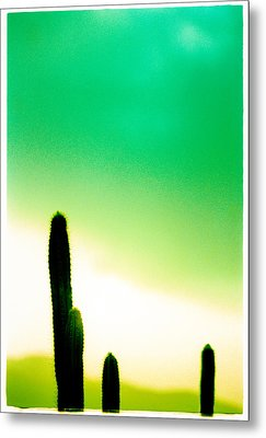 Cactus In The Morning Metal Print by Yo Pedro