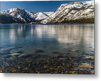 Calico Ice Metal Print by Mitch Shindelbower