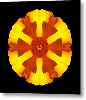 California Poppy Flower Mandala Metal Print by David J Bookbinder