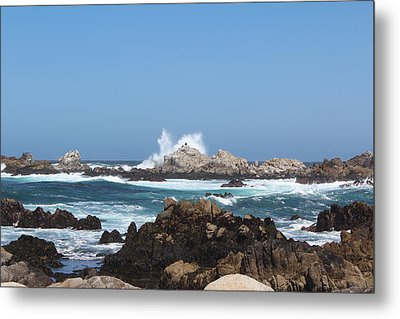 California See Harbor  Metal Print by Elena Wells
