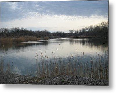 Calm Pond Metal Print by Brandie Marshall