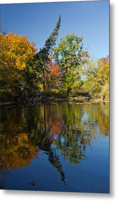 Calm Reflections Metal Print by Brent L Ander