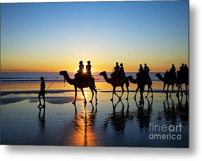 Camels On The Beach Broome Western Australia Metal Print by Colin and Linda McKie