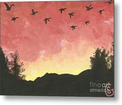 Canada Geese -- Looking For Lodging For The Night Metal Print by Sherry Goeben