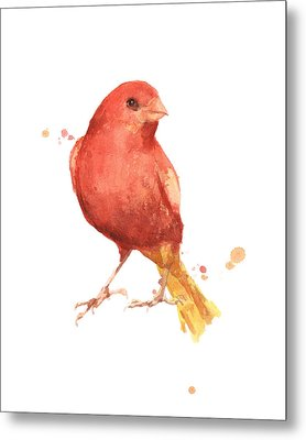 Canary Bird Metal Print by Alison Fennell