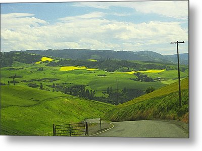Canola Country Road Metal Print by Anne Mott
