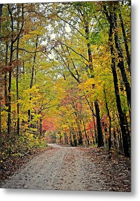 Canopy Of Yellow Metal Print by Marty Koch