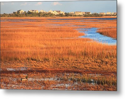 Cape Cod Salt Marsh Autumn Evening Metal Print by John Burk