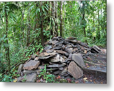 Caribbean Cruise - Dominica - 1212262 Metal Print by DC Photographer