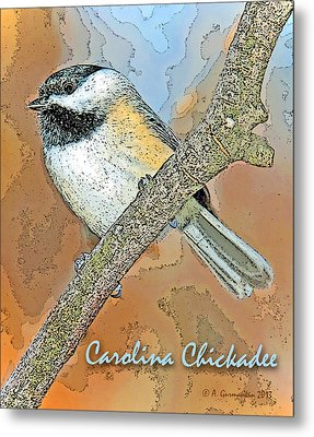 Metal Print featuring the photograph Carolina Chickadee Digital Image by A Gurmankin
