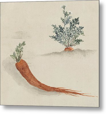 Carrots Metal Print by Aged Pixel