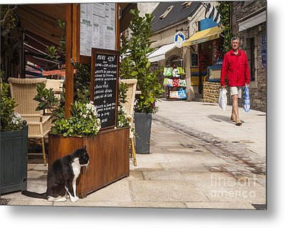 Cat And Restaurant Concarneau Brittany France Metal Print by Colin and Linda McKie