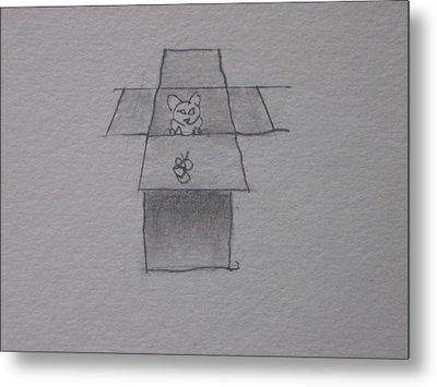 Cat In A Box Metal Print by AJ Brown