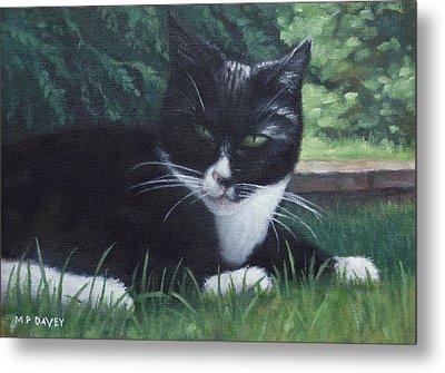 cat Metal Print by Martin Davey