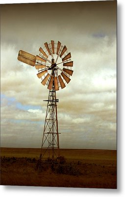 Catch The Wind Metal Print by Holly Kempe