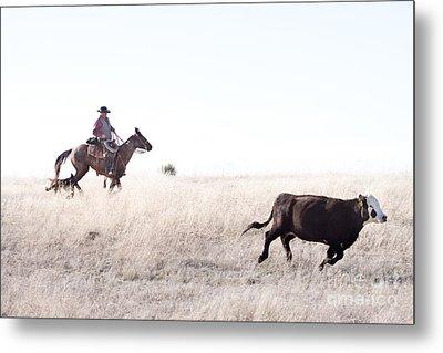 Cattle Drive Metal Print by Cindy Singleton