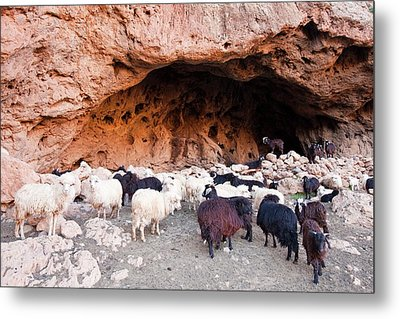 Cave Used As A Nightime Shelter Metal Print by Ashley Cooper