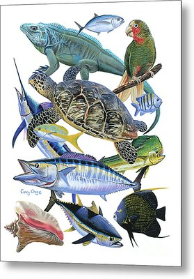 Cayman Collage Metal Print by Carey Chen