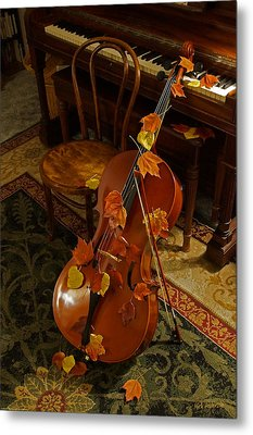 Cello Autumn 1 Metal Print by Mick Anderson
