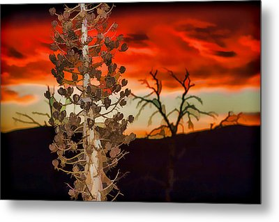 Century Soldier Sunset Metal Print by Scott Campbell