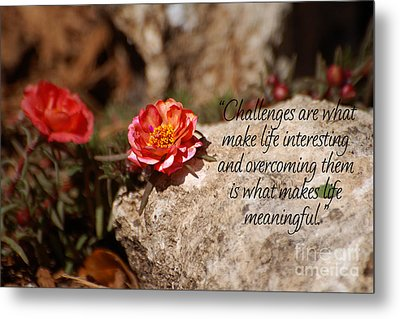 Challenges Metal Print by Diane E Berry