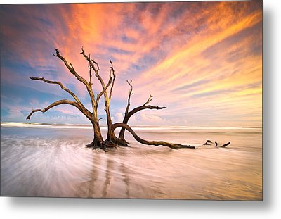 Charleston Sc Sunset Folly Beach Trees - The Calm Metal Print by Dave Allen