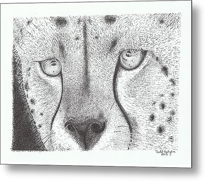 Cheetah Face Metal Print by Todd Hodgins