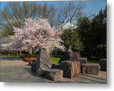Cherry Blossoms 2013 - 058 Metal Print by Metro DC Photography