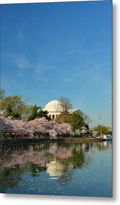 Cherry Blossoms 2013 - 098 Metal Print by Metro DC Photography