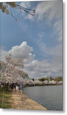 Cherry Blossoms - Washington Dc - 011370 Metal Print by DC Photographer