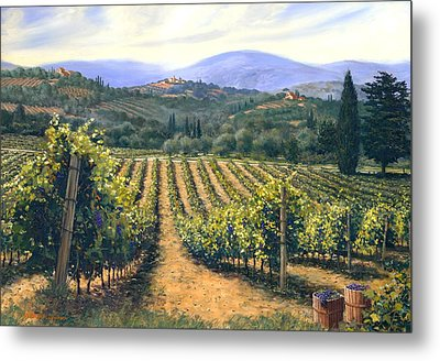 Chianti Vines Metal Print by Michael Swanson