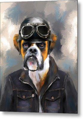 Chic Boxer Aviator Metal Print by Jai Johnson