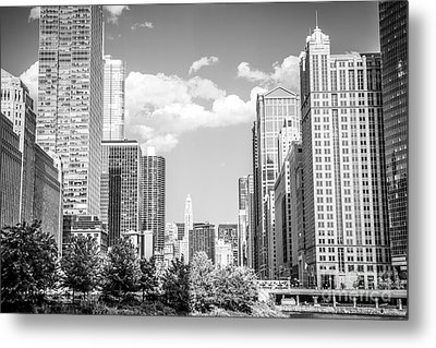 Chicago Cityscape Black And White Picture Metal Print by Paul Velgos
