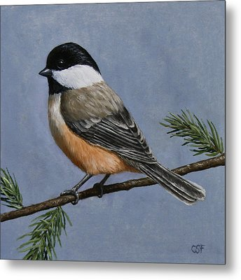 Chickadee Charm Metal Print by Crista Forest