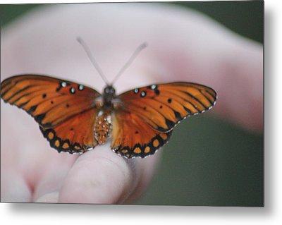 Child And Butterfly - We Shall Renew Again Metal Print by Carolina Liechtenstein