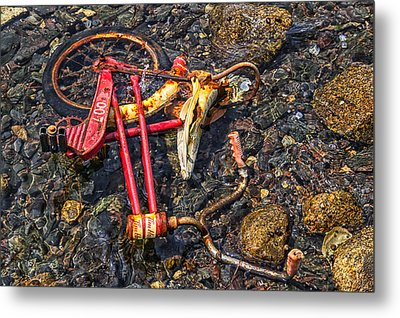 Childhood Bike Metal Print by Garry Gay