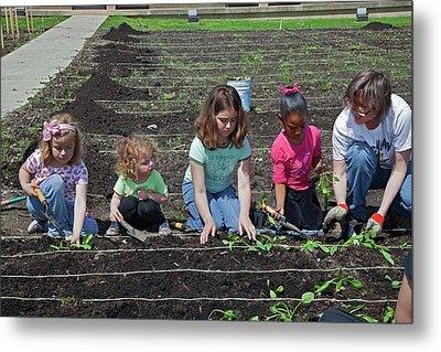 Children At Work In A Community Garden Metal Print by Jim West