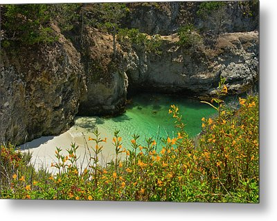 China Cove And Beach, Point Lobos State Metal Print by Michel Hersen