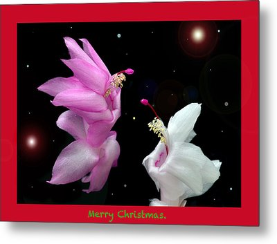 Christmas Cactus Fantasy Metal Print by Terence Davis