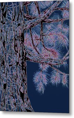 Christmas Pine Metal Print by Andrea Carroll