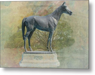 Citation Thoroughbred Metal Print by Rudy Umans