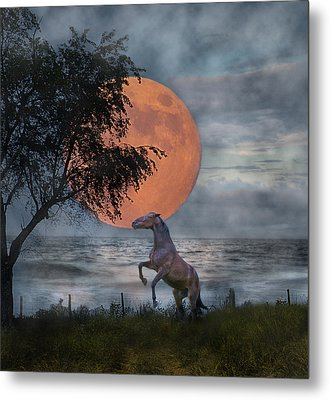 Claiming The Moon Metal Print by Betsy C Knapp