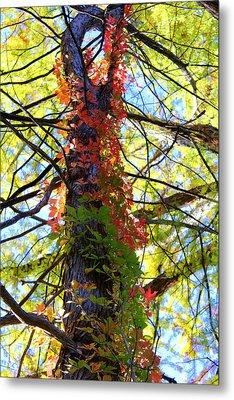 Climbing Red Metal Print by Laurette Escobar