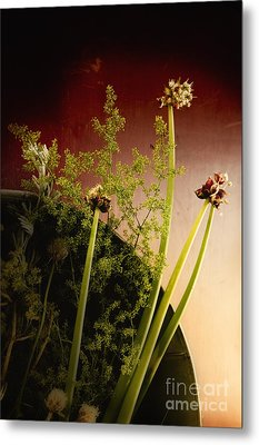 Clipped Stems Metal Print by Margie Hurwich