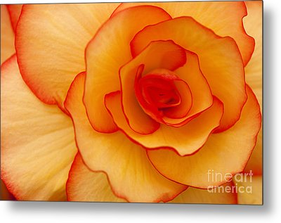 Close To Saturn Metal Print by Anne Gilbert