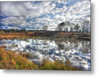 Cloud Reflections In Beaver Pond Canaan Valley Metal Print by Dan Friend
